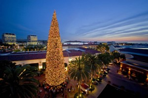 ·Celebrate the holiday season at Fashion Island at our Annual Tree