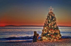 Christmas Tree Sunset at Crystal Cove State Park, Newport Beach .