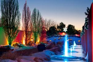 Blossoms of Light (Denver, Colorado)