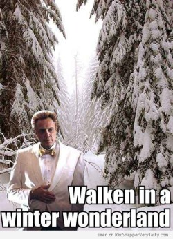 Walken in a Winter Wonder Land
