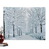 Fiber Optic Winter Wonderland Canvas Wall Art